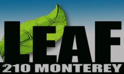 new-leaf-friendly